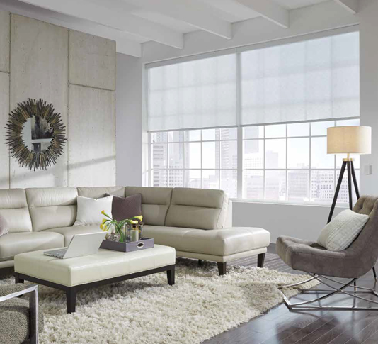 living room with window shades